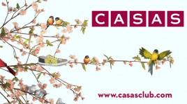 Casas | Centro Comercial Aqua Multiespacio